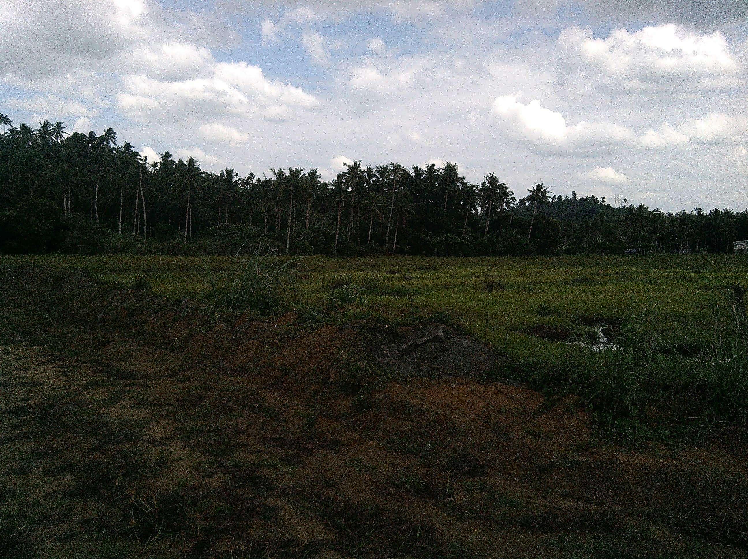 Property in Calbayog