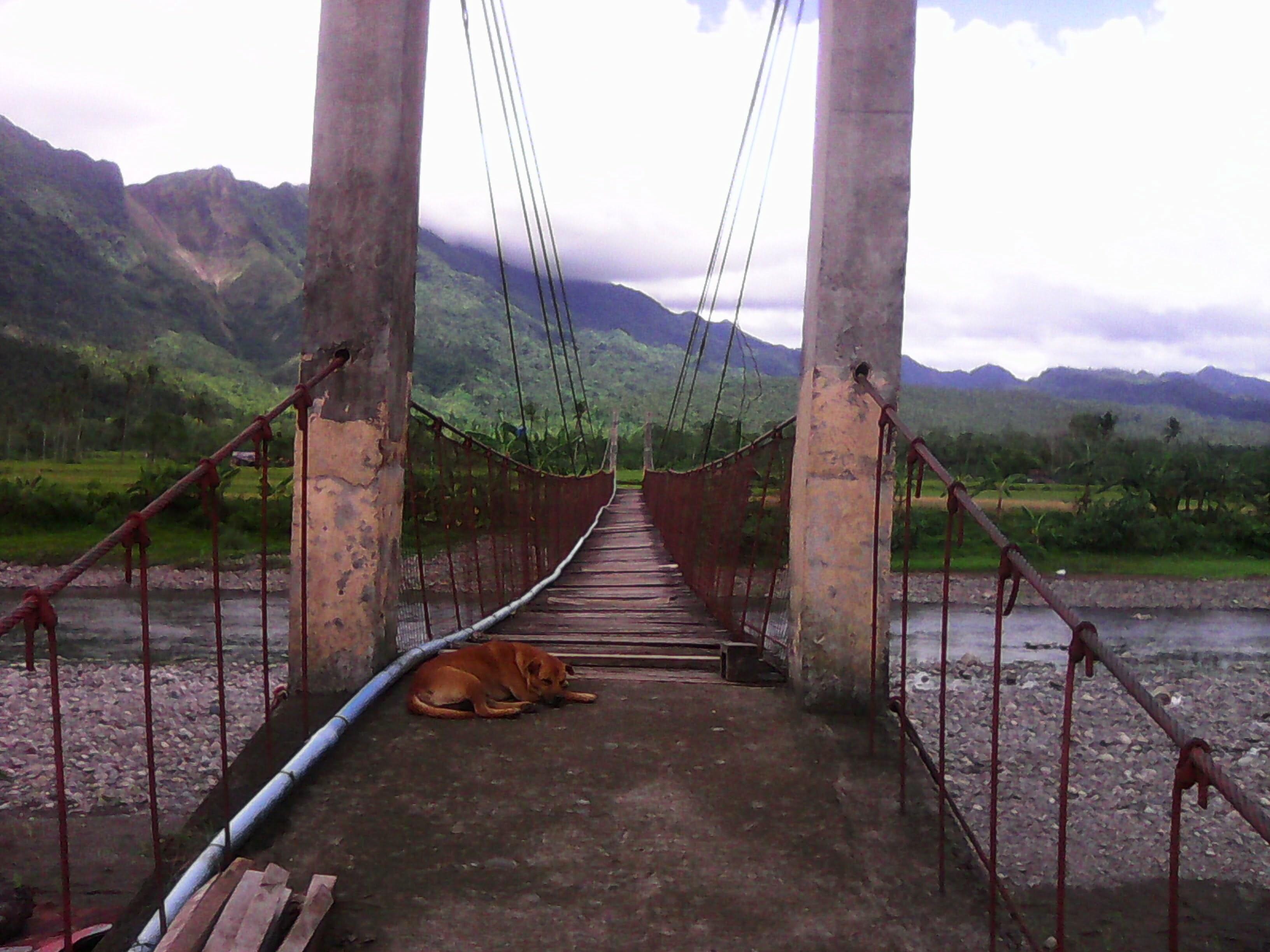 Zine #78 – Southern Leyte